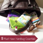 5 Must Have Essentials for Your Handbag