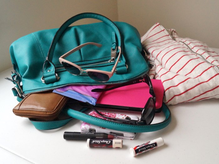 travel-essentials (700 x 525)
