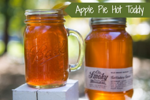 apple-pie-hot-toddy