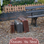 reasons-you-need-travel-insurance