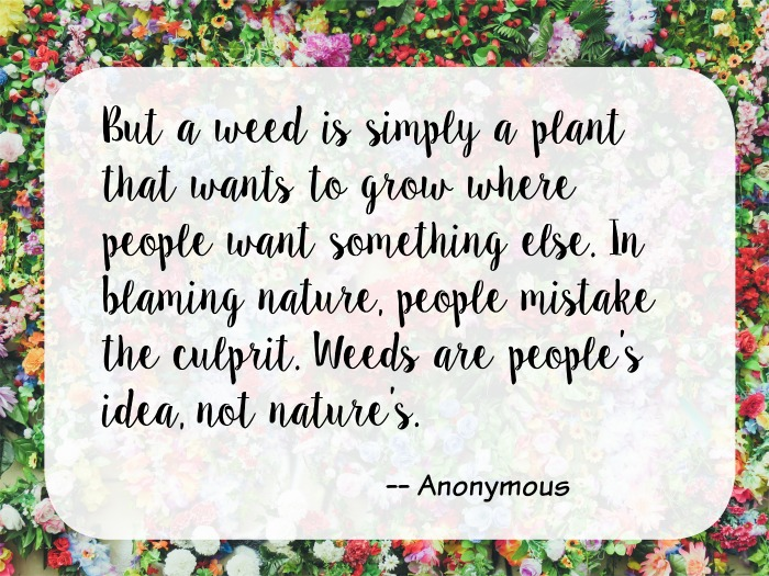 weeds-are-plants-garden-quote