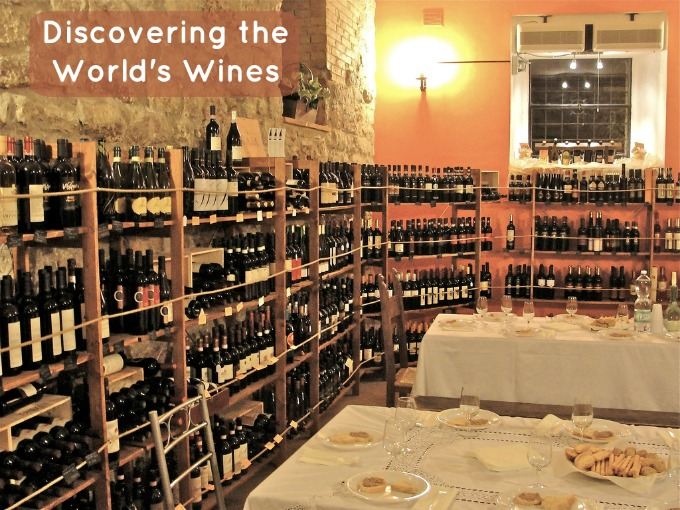 discovering the worlds wines