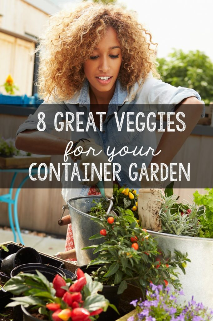 Great vegetables to grow in your container garden