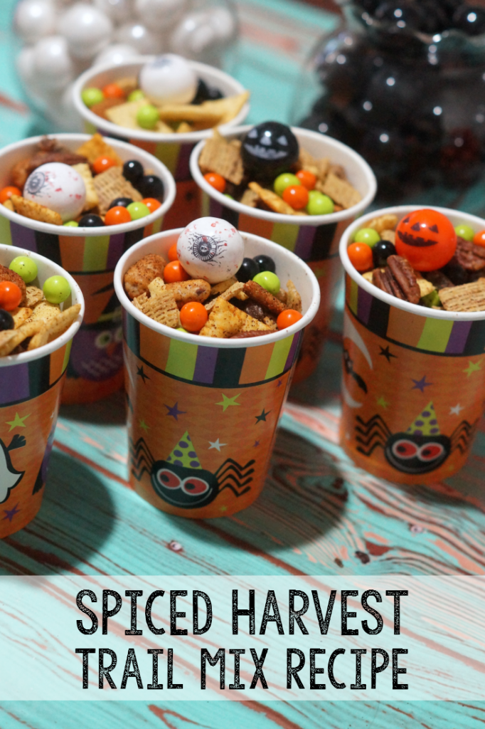 Spiced Harvest Trail Mix Recipe