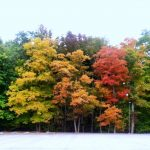 9 Great Weekend Getaways to See Fall Color