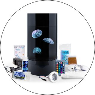 Nano 3 Jellyfish Aquarium Giveaway by Jellyfish Art