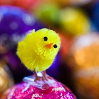 Corny Easter Jokes for Kids that Will Make You Laugh