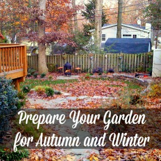 How to Prepare Your Garden for Fall