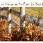 How to Choose Air Filters For Your Family