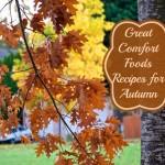 Three Fabulous Autumn Comfort Food Recipes