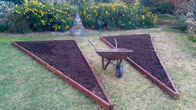 fill-beds-with-soil