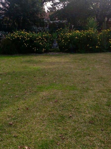 find-your-garden-spot