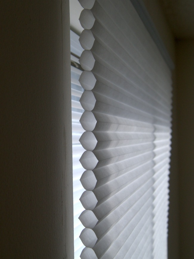 levolor-cellular-window-shade-650