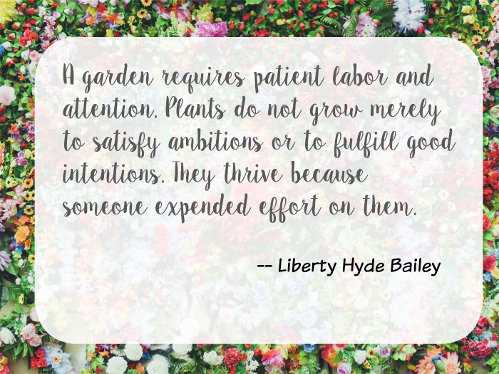 garden-requires-patient-labor-quote