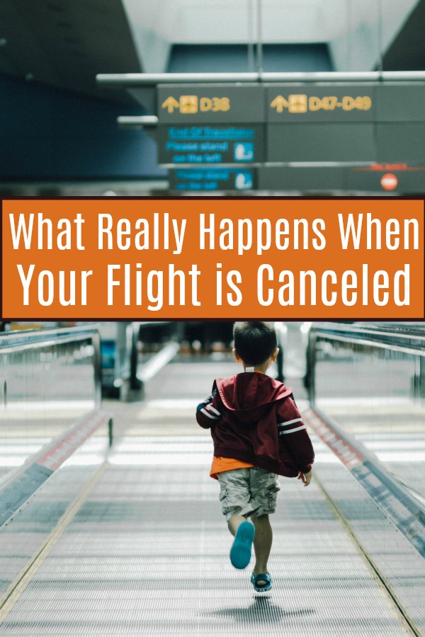 What really happens when your flight is canceled? | Travel | Flight delay | Missed flight Travel problems | problem solving