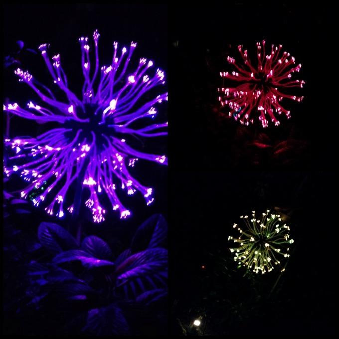 bruce munro urchins