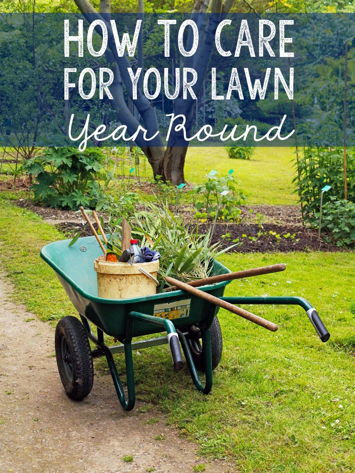 How to care for your lawn year round.