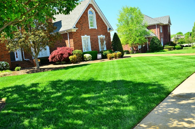 How to care for your lawn year round