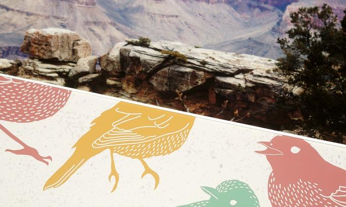 Grand canyon + Birds prints