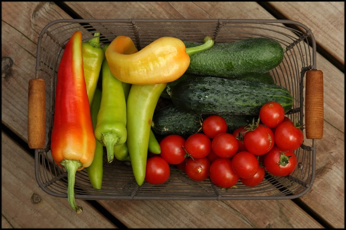 Grow your own veggies in a container garden