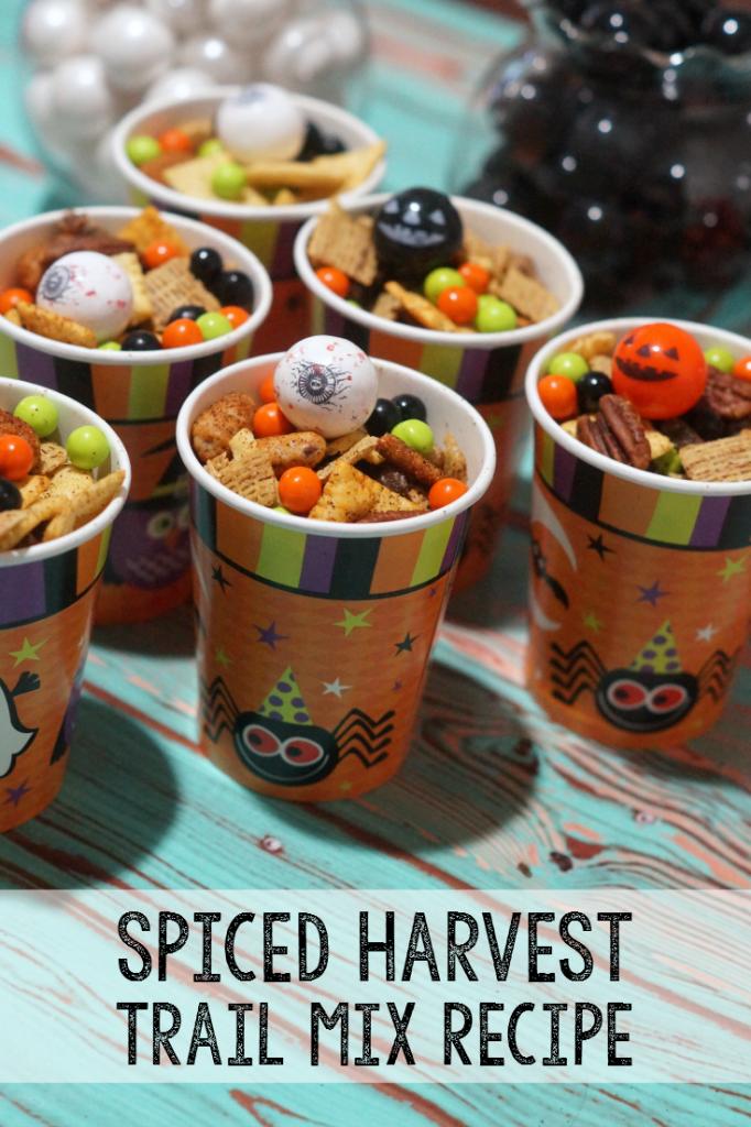 Spiced Harvest Trail Mix Recipe