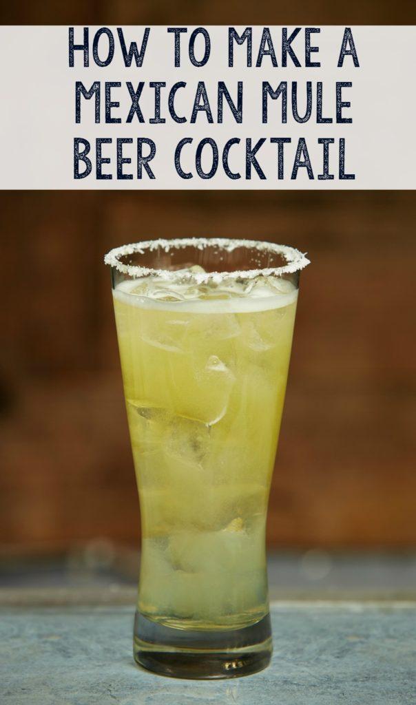 Mexicn mule beer cocktail in pilsner glass.