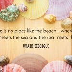 Great Beach Quotes to Help Kick off Summer Celebrations