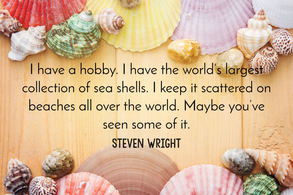 Steven Wright Beach Quote