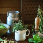 How to grow fresh herbs for your kitchen