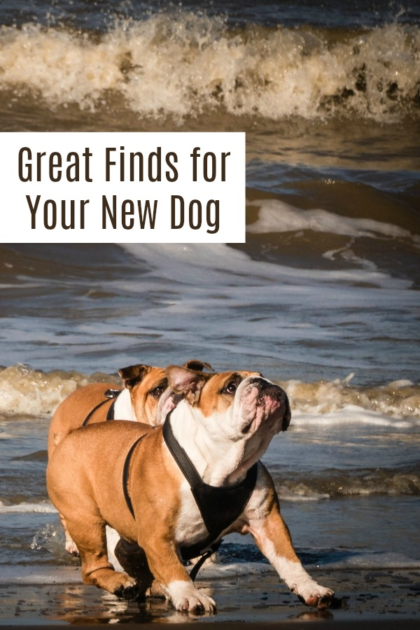 Great finds for the new - or old - dog parent | dogs | new pets | Must haves | adopt don't shop | dog gift guide | gift ideas for pet | #dogs #giftideas