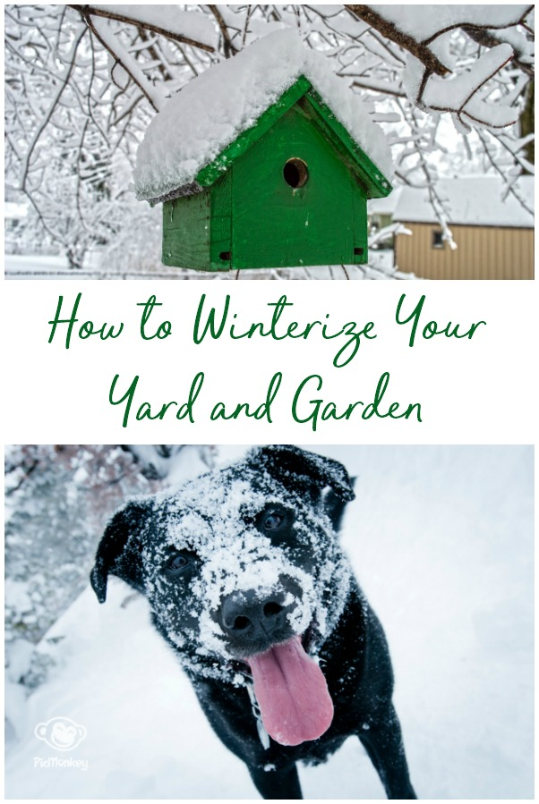 How to winterize your yard and garden. These easy steps will help you have a great looking outdoor space when spring rolls around. | gardening | yard care | lawn | lawncare | lawn care | outside | outdoor space | #gardening #home