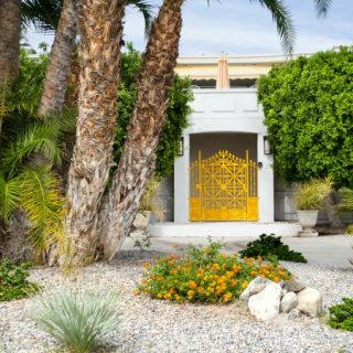 Is Xeriscaping Your Yard Right for You?