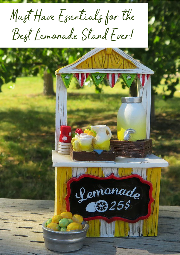 Must have essentials for the best lemonade stand ever. Also great for a theme party idea