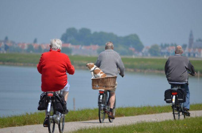 senior citizens riding bikes