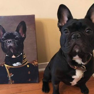 Crown and Paw Pet portrait giveaway