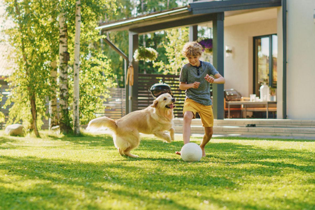 Benefits of a lawn sprinkler system