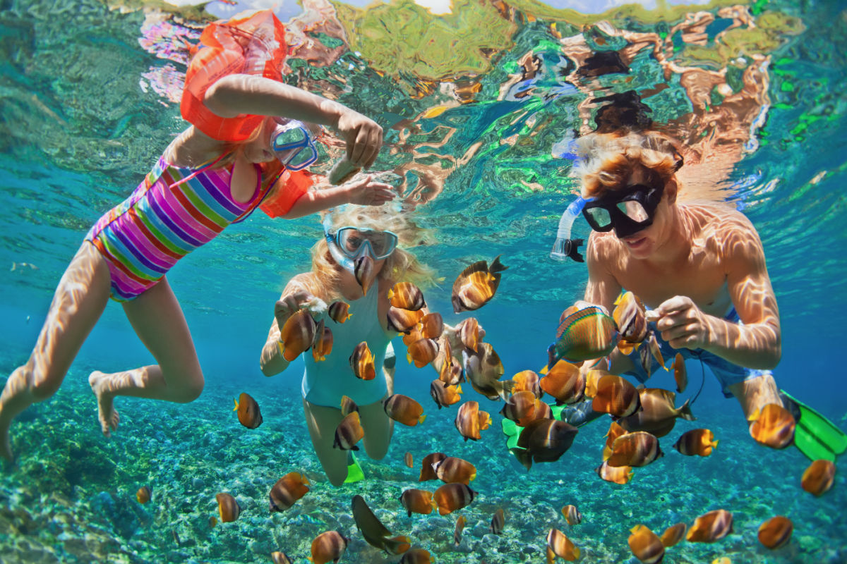 Family snorkeling with a school of clownfish